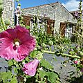 Juillet 2010 Mariage Blandine-Oléron-Gap 397