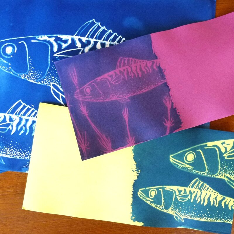 cyanotype poisson 3