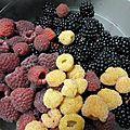 mures et framboises rouges et jaunes www.passionpotager.canalblog.com