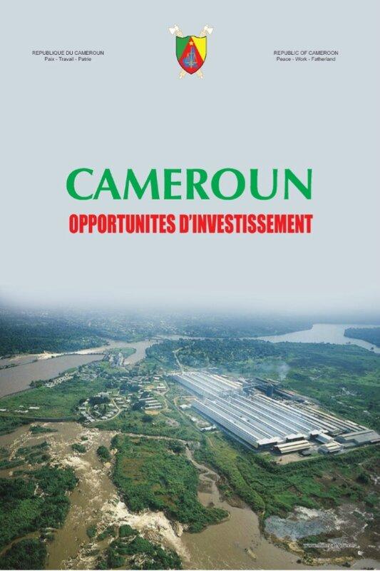 cameroun-opportunites-drsquoinvestissement-1-638