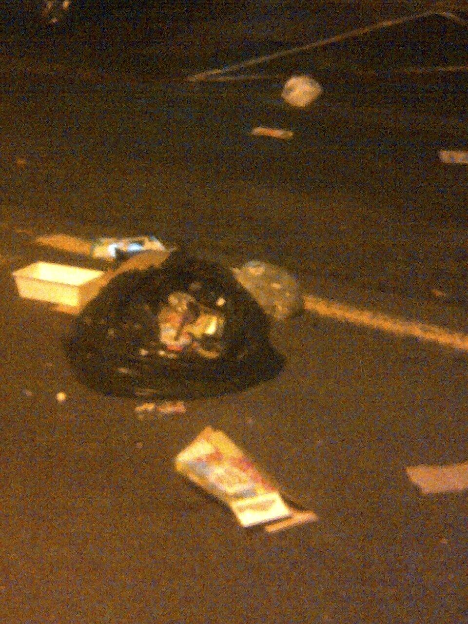 ordures (25)