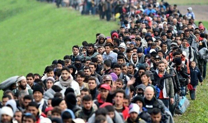 migrants-invasion