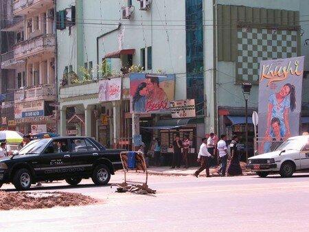 Birman_100___61_