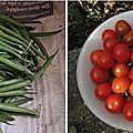 Open-Live-Writer/33d2101db183_F0F5/haricots tomates_thumb