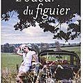 odeur_du_figuier