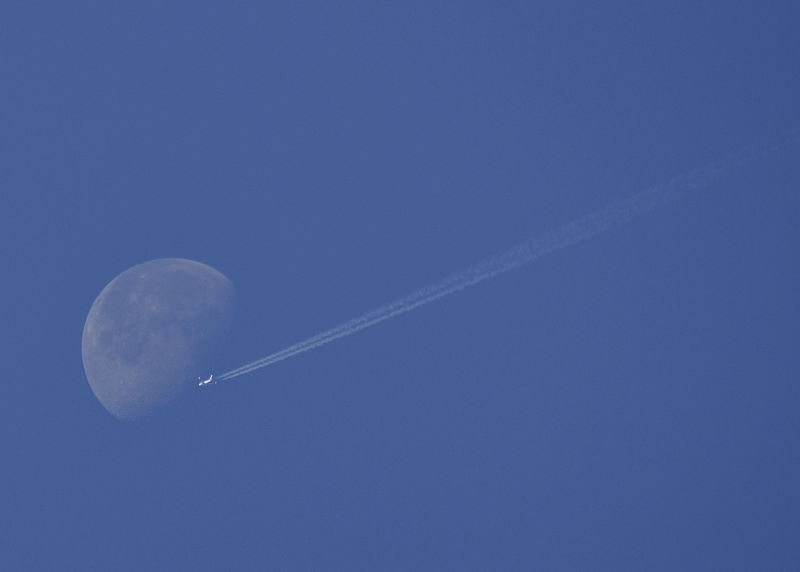 _DSC0447_Fly_me_to_the_moon