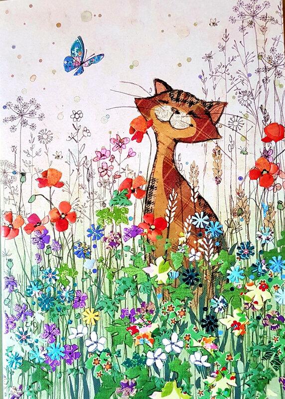 carte de voeux chat printemps fleurs