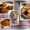montage-madeleines-comautre