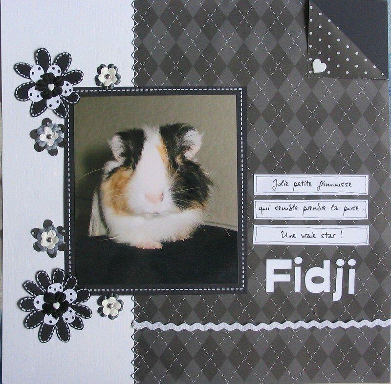 Fidji en noir et blanc