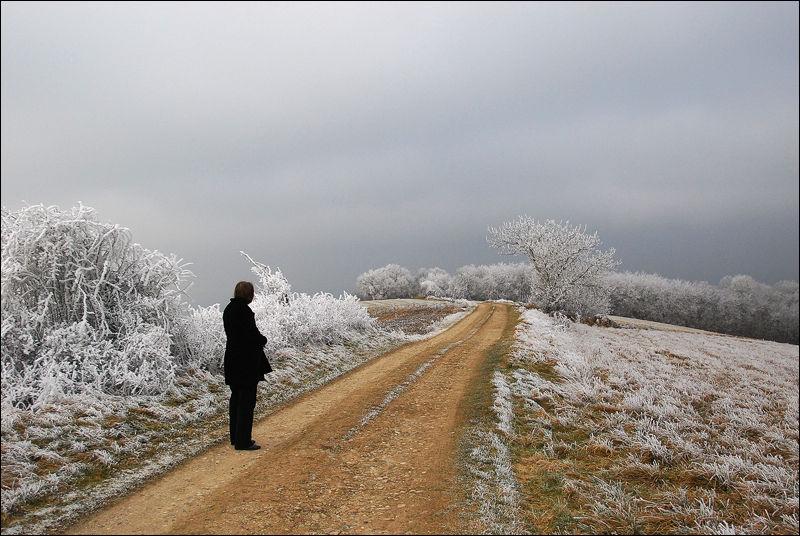 route_des_cretes1