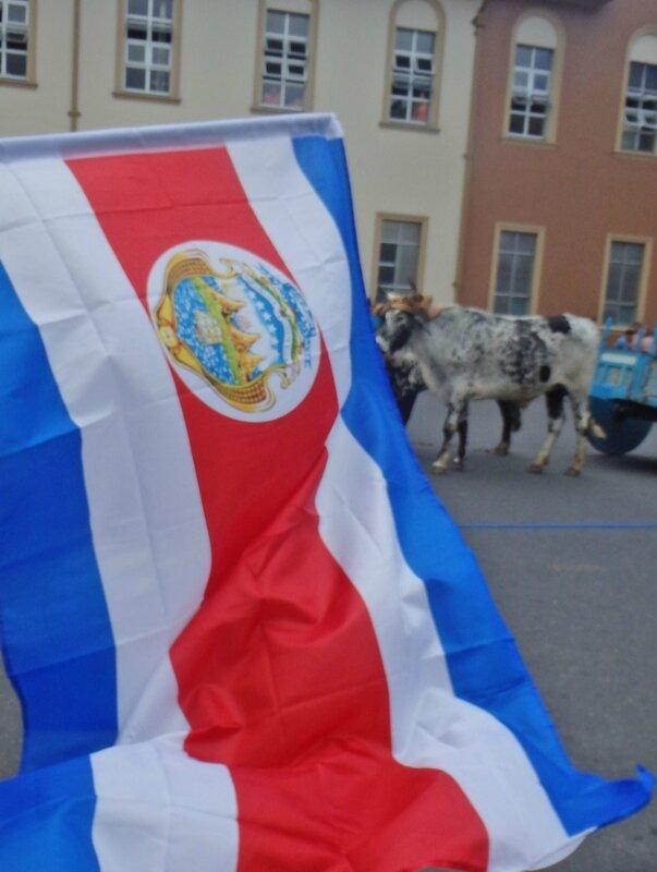 CR 1 San Jose styl 2015 13 procession boeufs drapeau