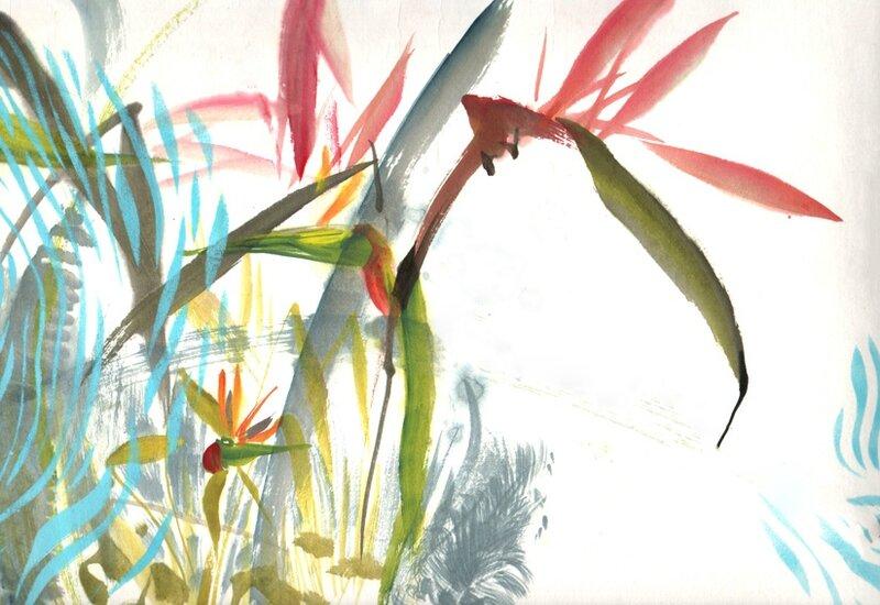 oiseau-paradis