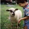 Jojo et agneau