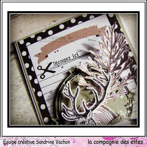 Sandrine VACHON 4 déc DT LCDE (5)