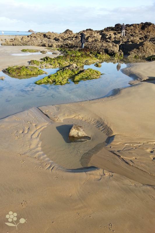 Saint Malo, plage à marée basse_4
