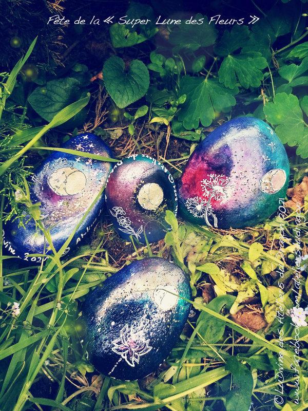 Superlunedesfleursprime