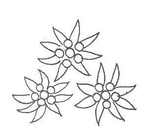 fleurnoel1