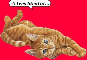 chat---tr-s-bient-t