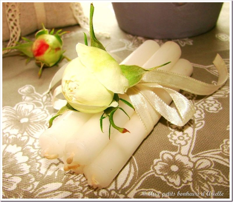 Roses, pivoines et seringat (4)