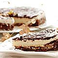 Brownie glacé noix de coco........glaçage chocolat.....