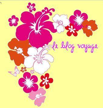 hibiscus jaune