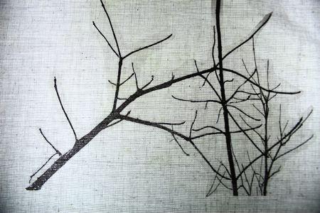 arbre234