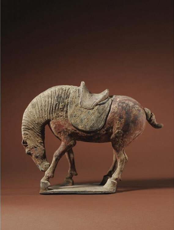 A rare painted pottery figure of a horse nuzzling its leg, Tang dynasty (618-907)