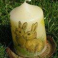 Una autre bougie petits lapins