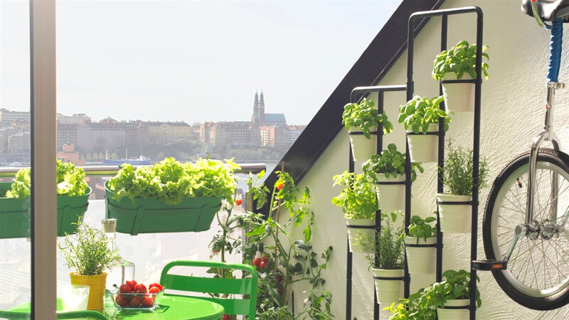 brise-vue-interieur-ikea-avec-balcon-et-07310174-photo-mur-vegetal-piedestal-sur-idees-de-decoration-dameublemen-la-taille-960x540px