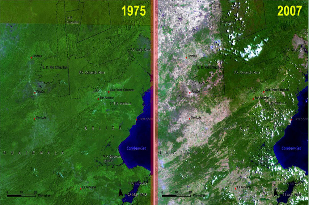 Deforestation differences between Belize and Guatemala create a straight line along their border visible from space