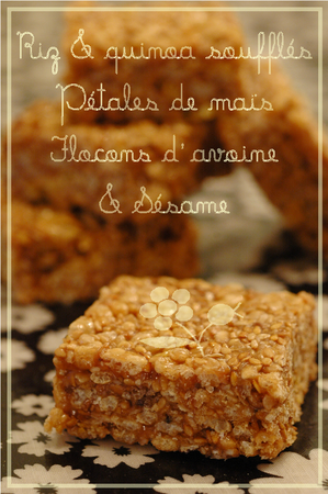 Carres_de_cereales___sesame_1