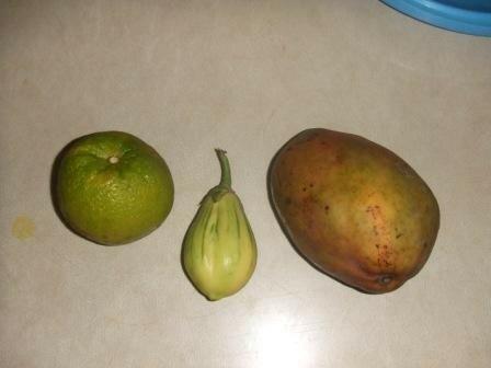 une orange verte, un oeuf de jardin (???) et une mangue marron...