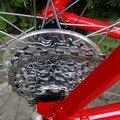Esculape Vélo (3)