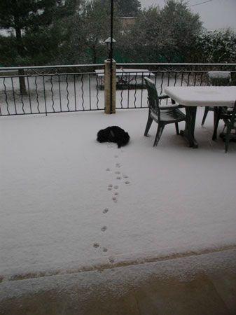 neige110212_0