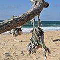 Plaja y aod