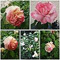 Balades fête des mères brocante jardin (28)