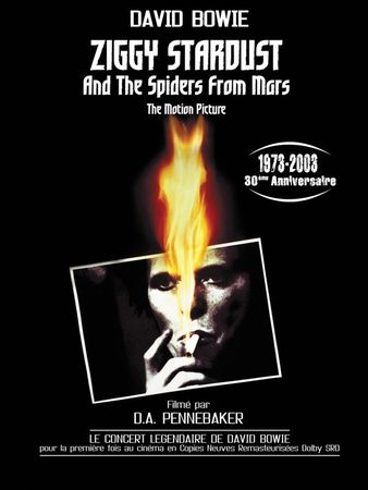 1242075833_ziggy_stardust_and_the_spiders_from_mars