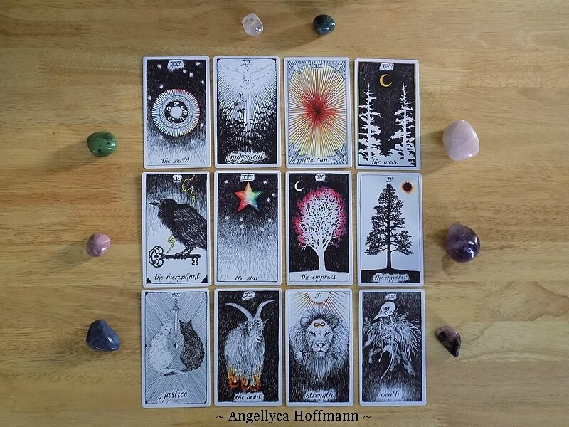 The Wild Unknown Tarot 5 - Blog Ésotérique Samhain Sabbath
