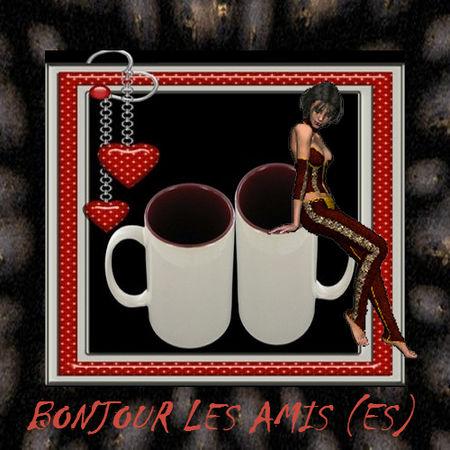 Bonjour_les_amis__es__2