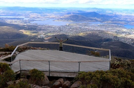 Mt Wellington19