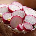 Tartines de radis roses au fromage de chèvre