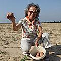 Le glanage: une pratique ancestrale qui perdure en normandie (pays de bray)