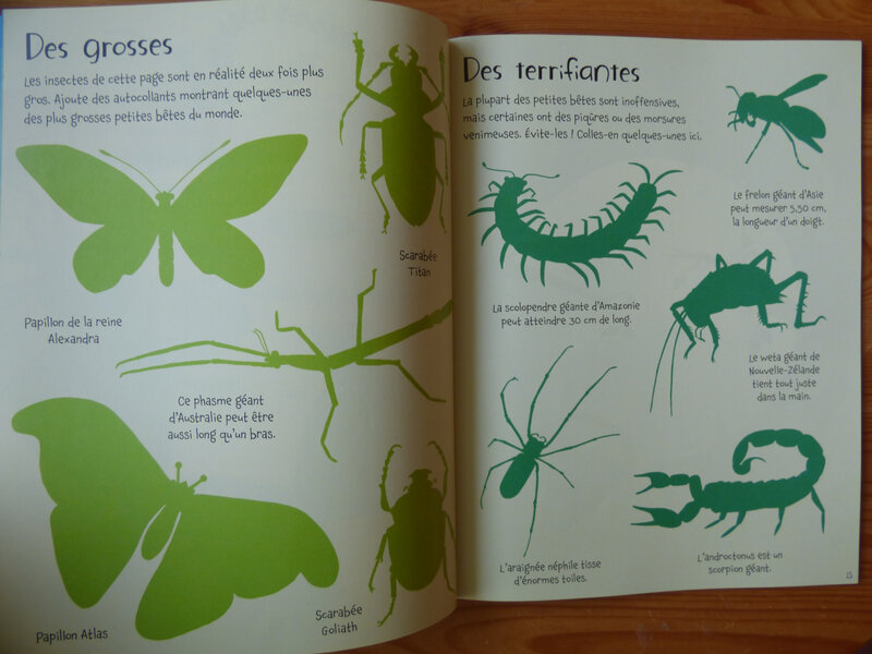 Les petites bêtes (2)