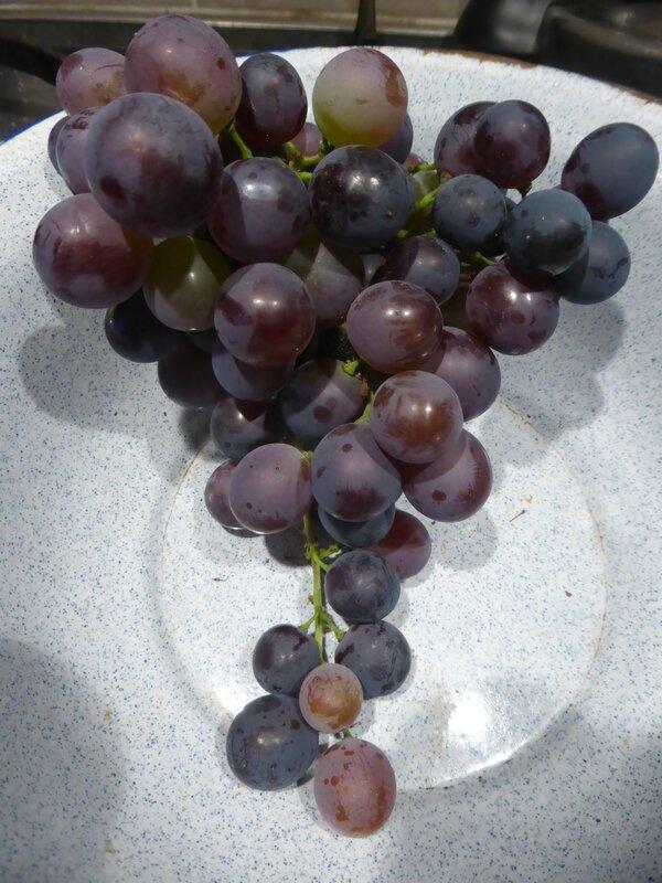 3-raisins (2)
