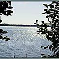 Diamants de soleil au Lac d'Azur 4