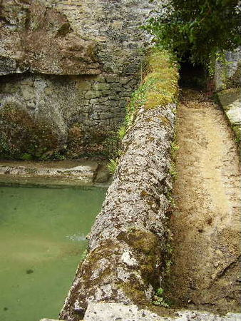 P8161562_Le_lavoir_recueille_l_eau_du_ruisseau_communal_qui_passe_sous_la_cit_