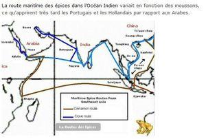 La Route des épices dans l'Océan Indien