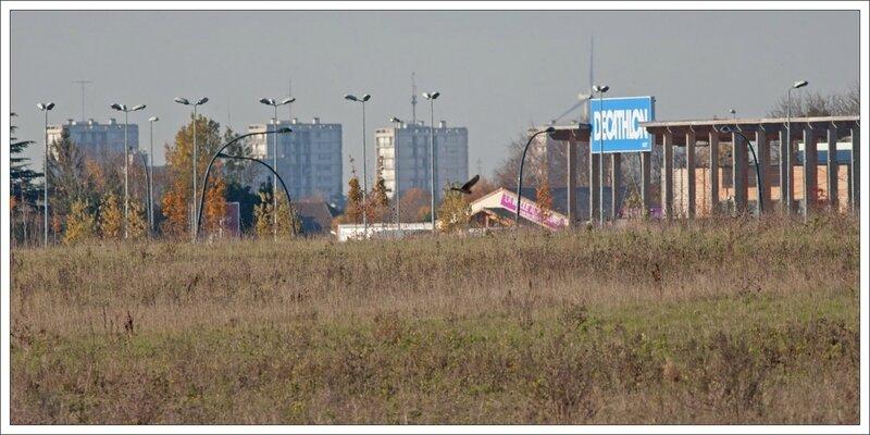 ville frontières 3 magasins oiseau 201114