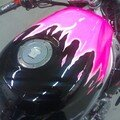 CBR Pinkfighter