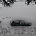☃❄ neige à montpellier⛷ + présentation livre 📖de terry harrison